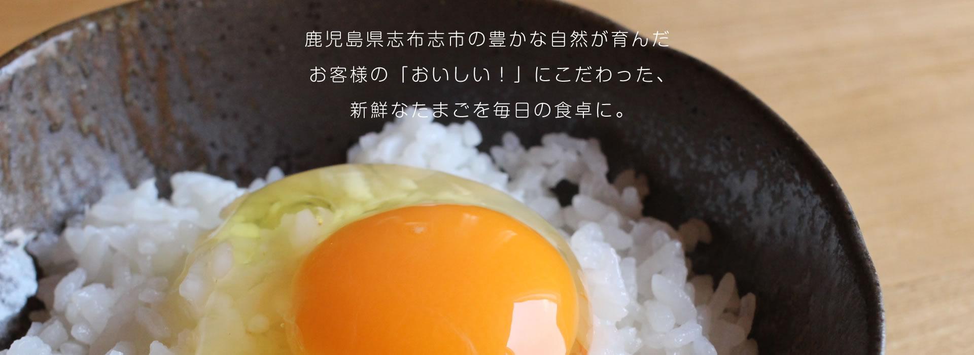 鹿児島県志布志市の豊かな自然が育んだお客様の「おいしい!」にこだわった、新鮮なたまごを毎日の食卓に。